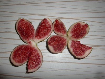 royal figs